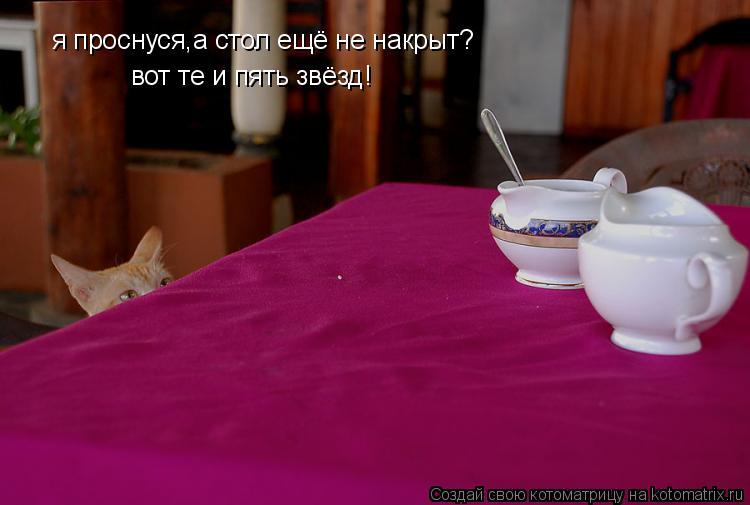 Котоматрица: я проснуся,а стол ещё не накрыт? вот те и пять звёзд!