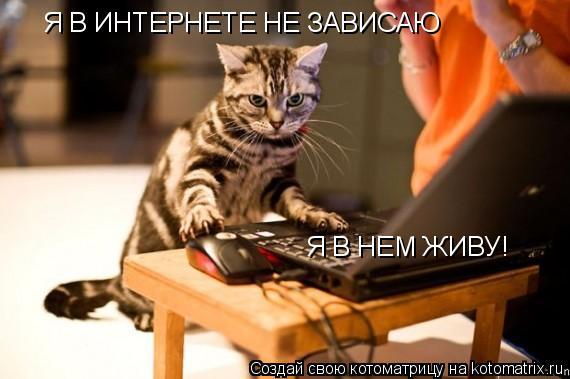 Котоматрица: Я В ИНТЕРНЕТЕ НЕ ЗАВИСАЮ Я В НЕМ ЖИВУ!