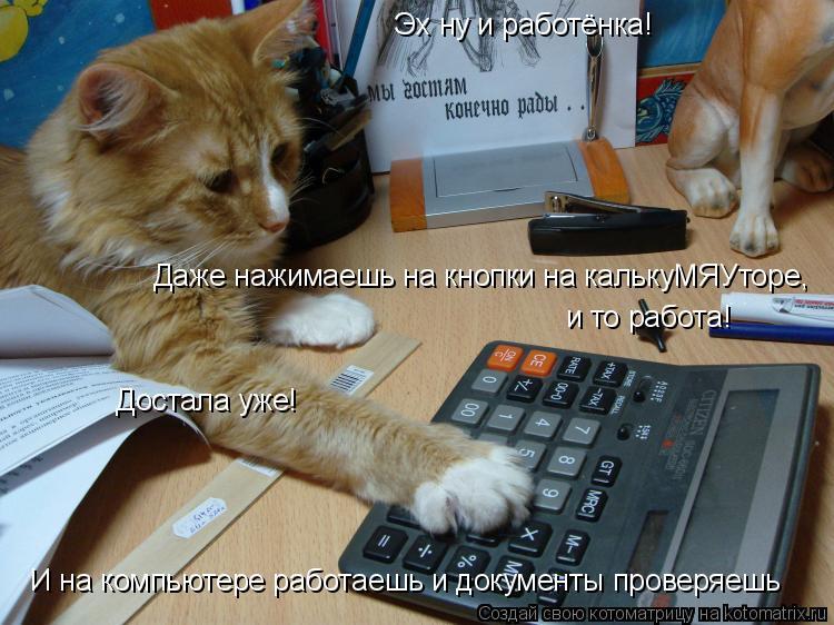 Котоматрица: Эх ну и работёнка! И на компьютере работаешь и документы проверяешь Даже нажимаешь на кнопки на калькуМЯУторе, и то работа! Достала уже!