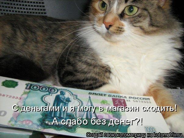 Котоматрица: С деньгами и я могу в магазин сходить! А слабо без денег?!