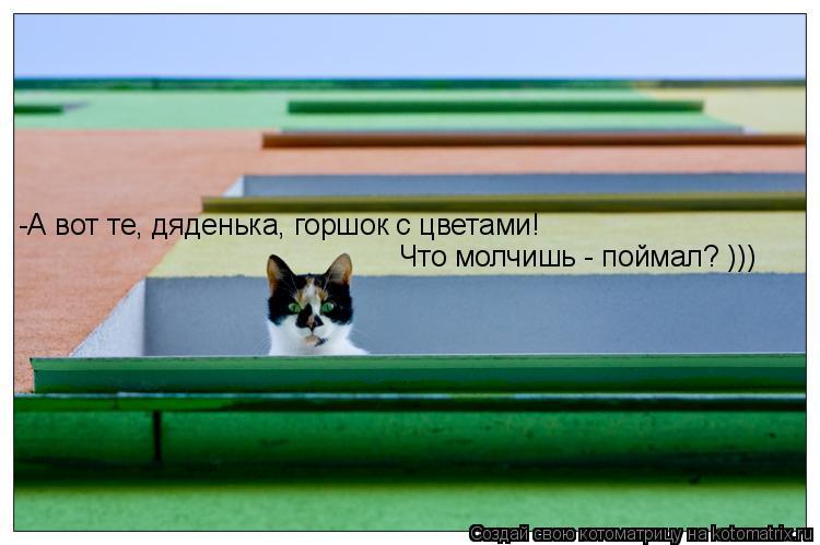 Котоматрица: -А вот те, дяденька, горшок с цветами!  Что молчишь - поймал? )))
