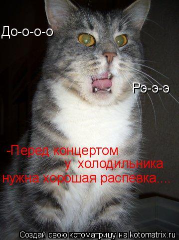 Котоматрица: До-о-о-о Рэ-э-э -Перед концертом  у  холодильника нужна хорошая распевка....