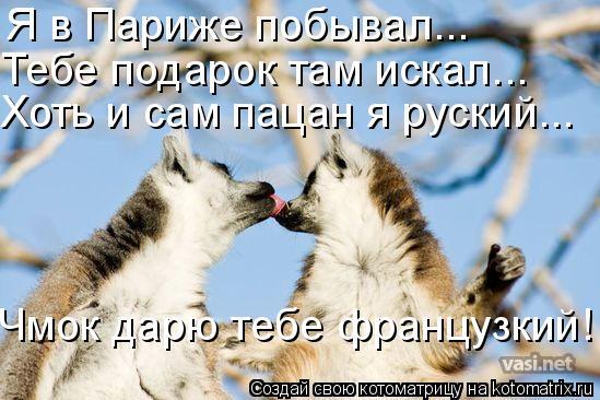 Котоматрица: Я в Париже побывал... Тебе подарок там искал... Хоть и сам пацан я руский... Чмок дарю тебе французкий!