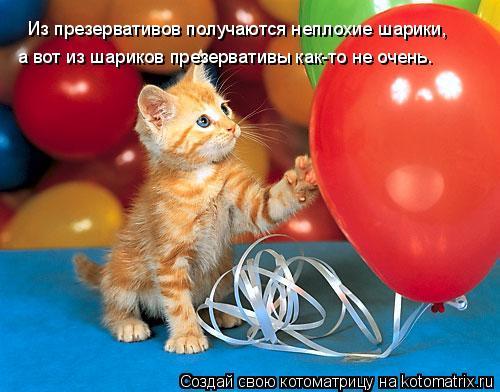 Котоматрица: Из презервативов получаются неплохие шарики,  а вот из шариков презервативы как-то не очень.