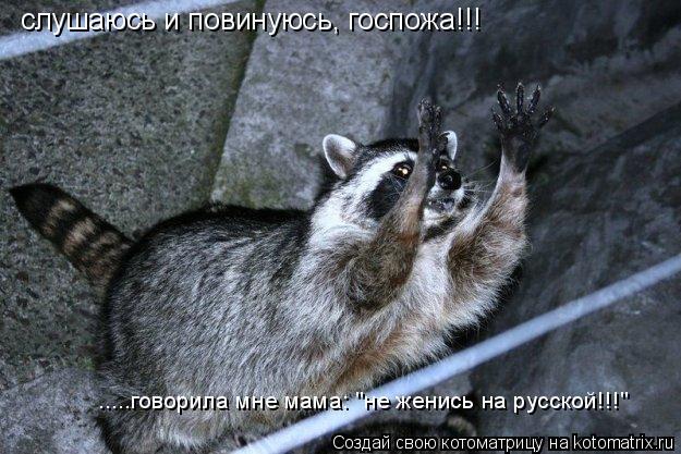 """Котоматрица: .....говорила мне мама: """"не женись на русской!!!"""" слушаюсь и повинуюсь, госпожа!!!"""
