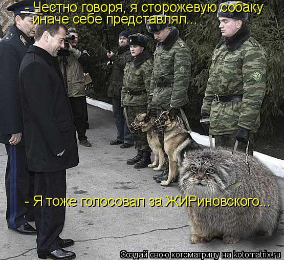Котоматрица: - Честно говоря, я сторожевую собаку иначе себе представлял... - Я тоже голосовал за ЖИРиновского...