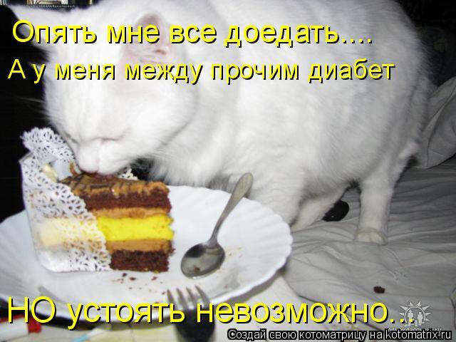 Котоматрица: Опять мне все доедать.... А у меня между прочим диабет НО устоять невозможно...
