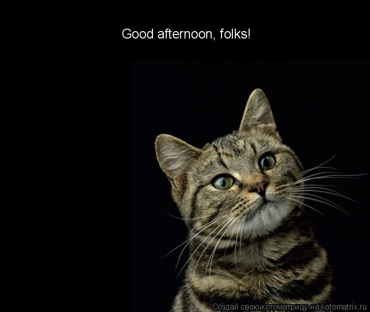 Котоматрица: Good afternoon, folks!