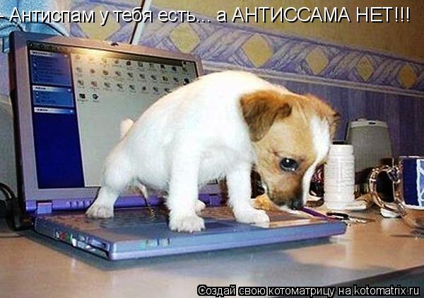Котоматрица: - Антиспам у тебя есть... а АНТИССАМА НЕТ!!!