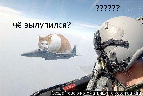 Котоматрица: ?????? чё вылупился?