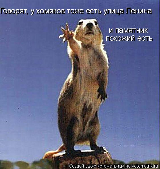 Котоматрица: Говорят, у хомяков тоже есть улица Ленина Говорят, у хомяков тоже есть улица Ленина и памятник похожий есть