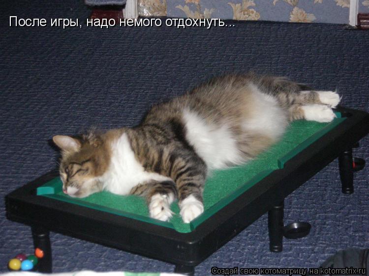 Котоматрица: После игры, надо немого отдохнуть...