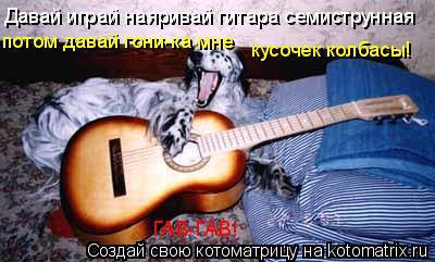Котоматрица: Давай играй наяривай гитара семиструнная потом давай гони-ка мне кусочек колбасы! ГАВ-ГАВ!