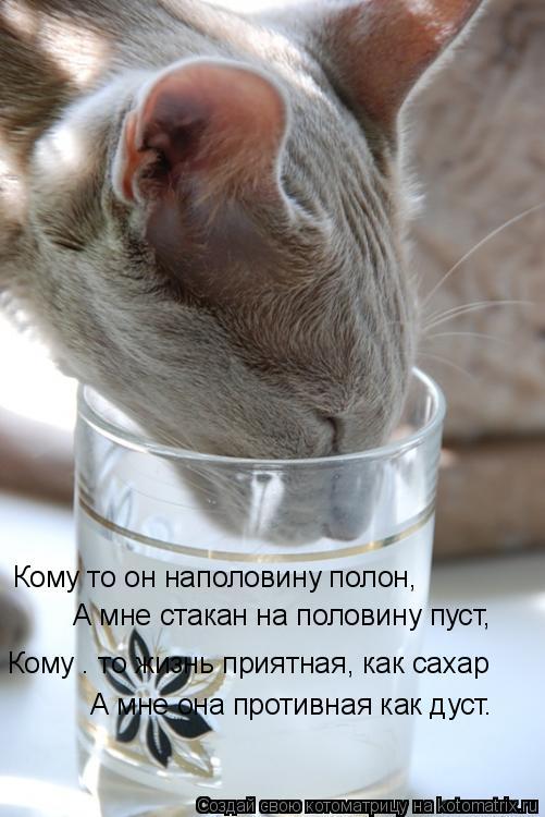 Котоматрица: Кому то он наполовину полон, А мне стакан на половину пуст,  Кому – то жизнь приятная, как сахар А мне она противная как дуст.