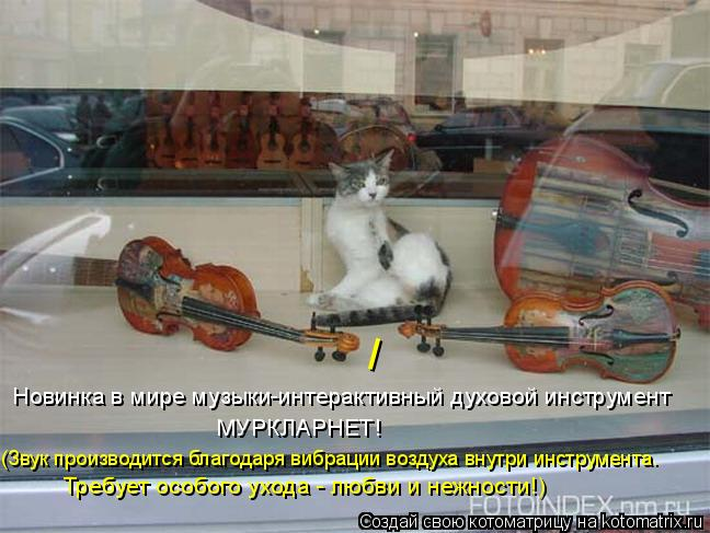 Котоматрица: Новинка в мире музыки-интерактивный духовой инструмент  МУРКЛАРНЕТ! (Звук производится благодаря вибрации воздуха внутри инструмента.  Тр