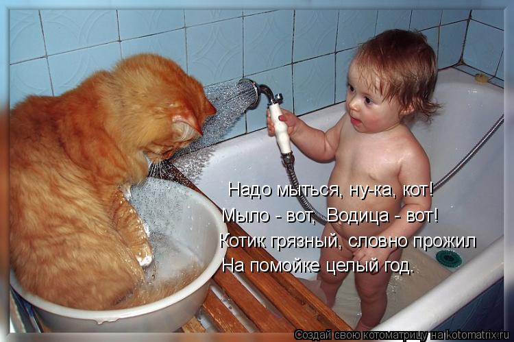 Котоматрица: Надо мыться, ну-ка, кот!   Мыло - вот,  Водица - вот!   Котик грязный, словно прожил   На помойке целый год.