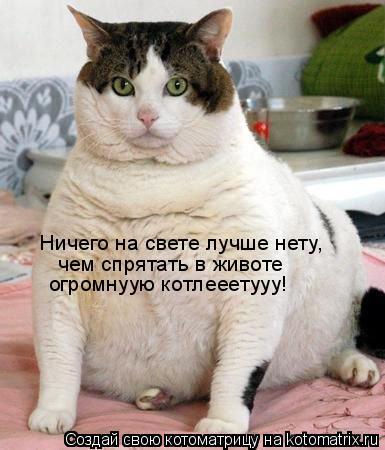 Котоматрица: Ничего на свете лучше нету, чем спрятать в животе огромнуую котлееетууу!