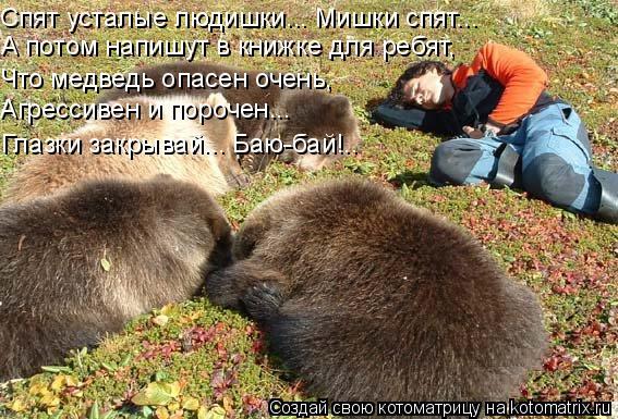 Котоматрица: Спят усталые людишки... Мишки спят... А потом напишут в книжке для ребят, Что медведь опасен очень, Агрессивен и порочен... Глазки закрывай... Ба