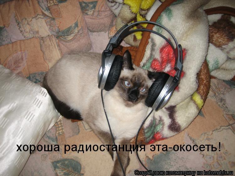 Котоматрица: хороша радиостанция эта-окосеть!