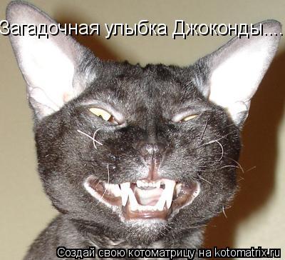 Котоматрица: Загадочная улыбка Джоконды....