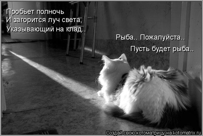 Котоматрица: Пробьет полночь И загорится луч света, Указывающий на клад…. Рыба…. Пожалуйста….  Пусть будет рыба..