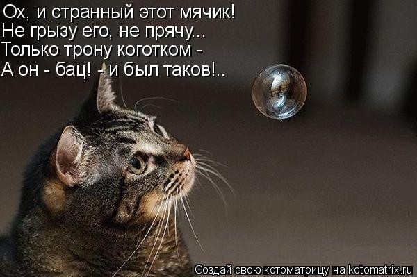 Котоматрица: Ох, и странный этот мячик! Не грызу его, не прячу... Только трону коготком - А он - бац! - и был таков!..