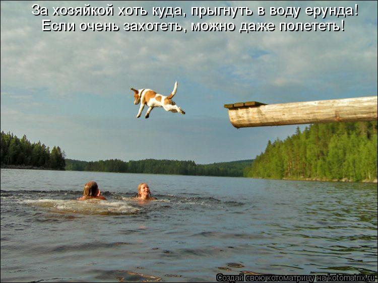 Котоматрица: За хозяйкой хоть куда, прыгнуть в воду ерунда! Если очень захотеть, можно даже полететь!