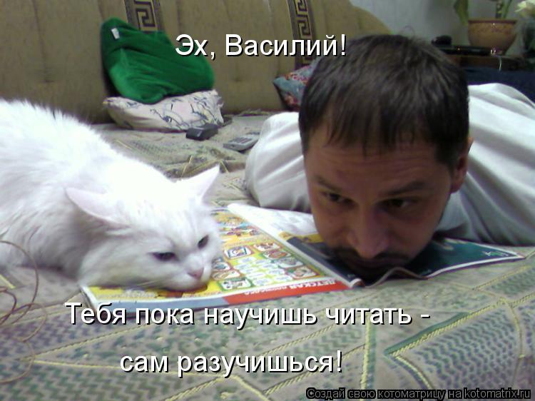 Котоматрица: Эх, Василий! Тебя пока научишь читать - сам разучишься!
