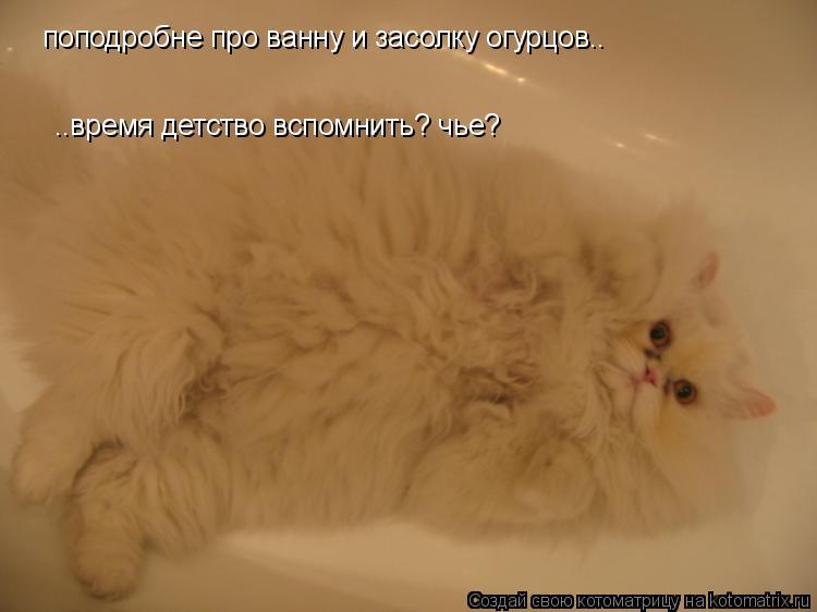 Котоматрица: поподробне про ванну и засолку огурцов.. ..время детство вспомнить? чье?