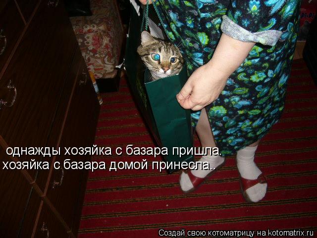 Котоматрица: однажды хозяйка с базара пришла. хозяйка с базара домой принесла..