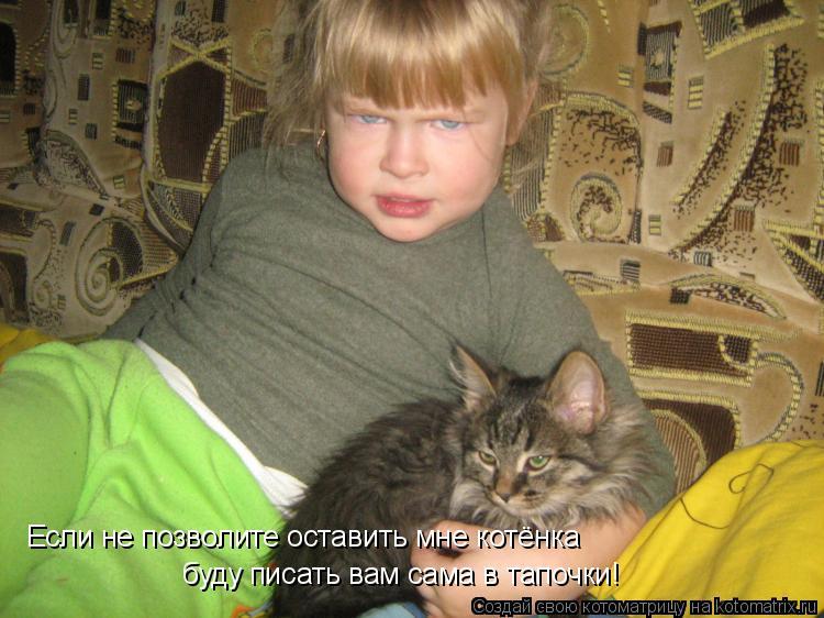 Котоматрица: Если не позволите оставить мне котёнка буду писать вам сама в тапочки!