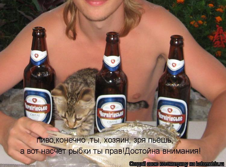Котоматрица: а вот насчёт рыбки ты прав!Достойна внимания! пиво,конечно ,ты, хозяин, зря пьёшь,