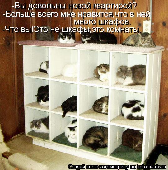 Котоматрица: -Вы довольны новой квартирой? -Больше всего мне нравится,что в ней много шкафов. -Что вы!Это не шкафы,это комнаты.