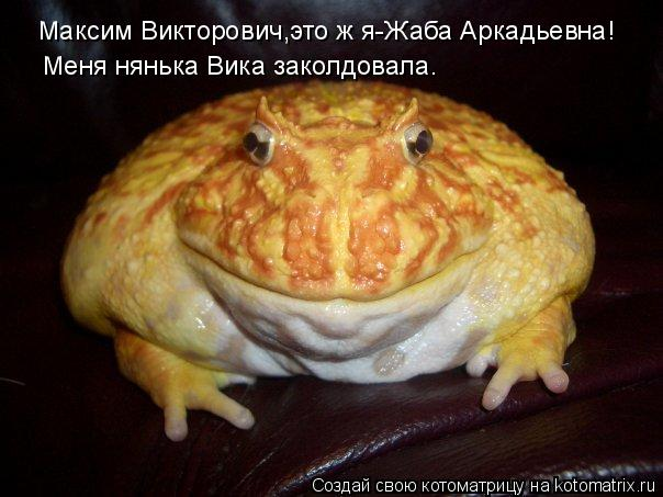 Котоматрица: Максим Викторович,это ж я-Жаба Аркадьевна! Меня нянька Вика заколдовала.