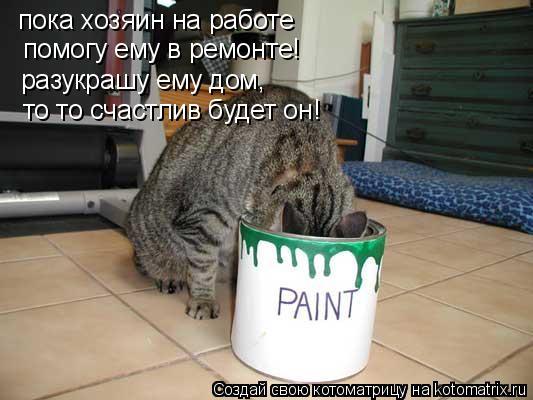 Котоматрица: пока хозяин на работе помогу ему в ремонте! разукрашу ему дом, то то счастлив будет он!