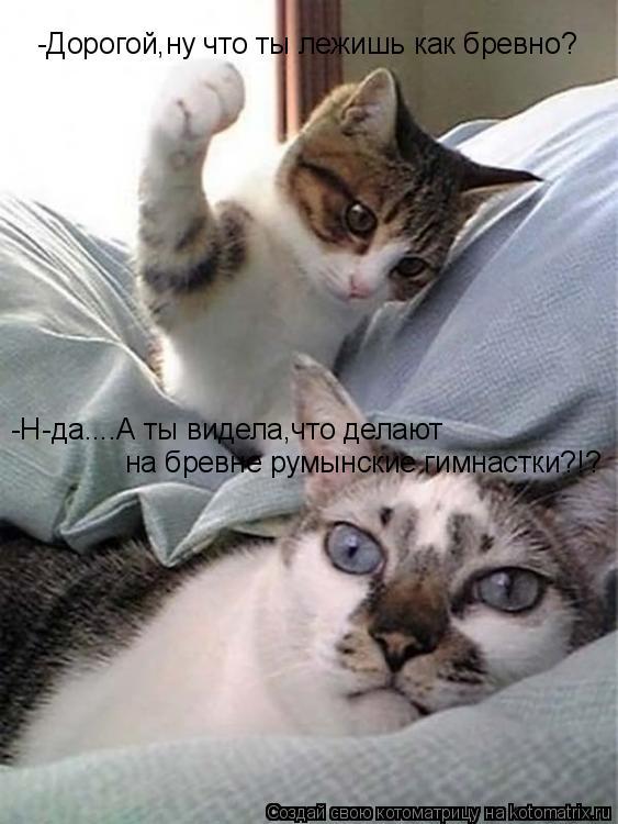 Котоматрица: -Дорогой,ну что ты лежишь как бревно? -Н-да....А ты видела,что делают  на бревне румынские гимнастки?!?