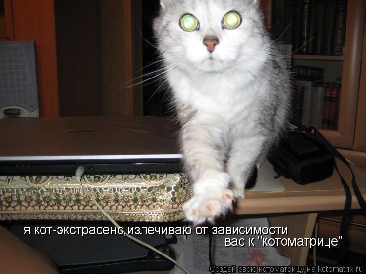 """Котоматрица: я кот-экстрасенс,излечиваю от зависимости вас к """"котоматрице"""""""