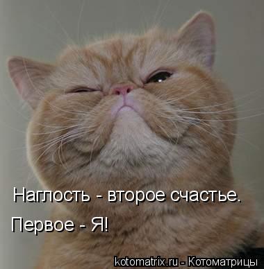 Котоматрица: Наглость - второе счастье. Первое - Я!