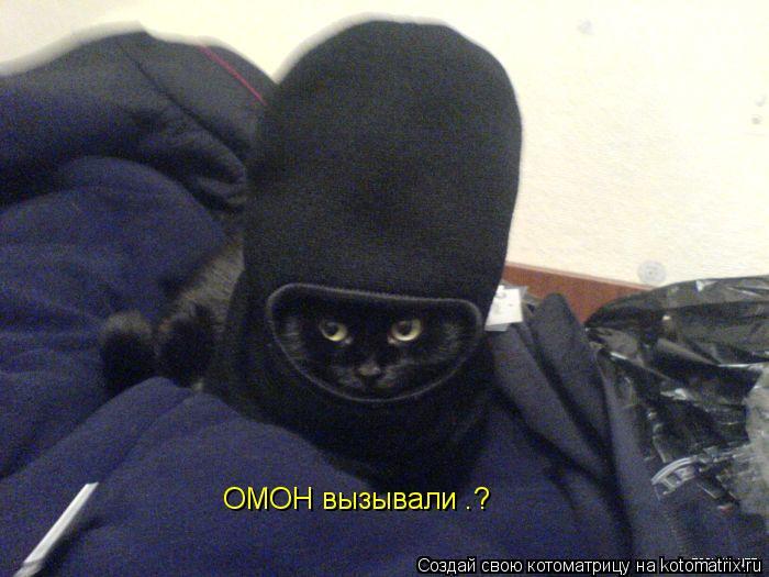 http://kotomatrix.ru/images/lolz/2009/02/03/IA.jpg