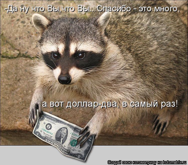 Котоматрица: -Да ну что Вы,что Вы...Спасибо - это много, а вот доллар-два, в самый раз!