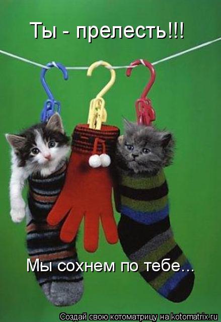 http://kotomatrix.ru/images/lolz/2009/02/03/W5.jpg