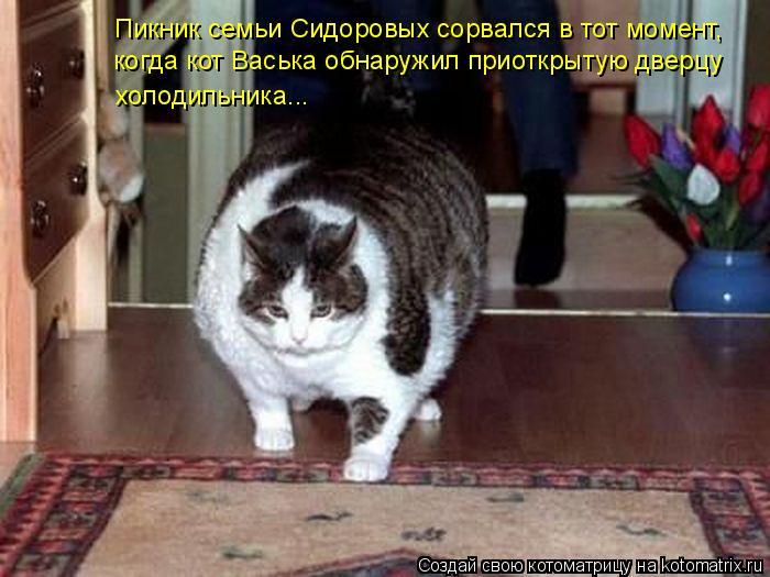 Котоматрица: Пикник семьи Сидоровых сорвался в тот момент,  когда кот Васька обнаружил приоткрытую дверцу  холодильника...