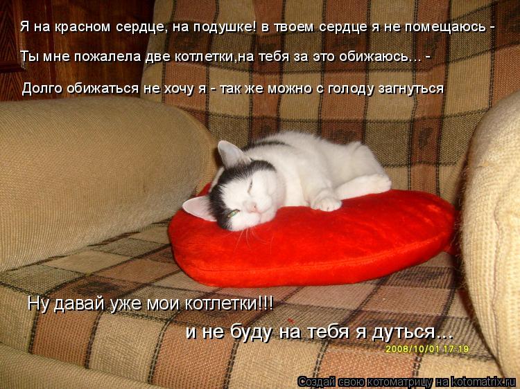 Котоматрица: Я на красном сердце, на подушке! в твоем сердце я не помещаюсь - Ты мне пожалела две котлетки,на тебя за это обижаюсь... - Долго обижаться не хо