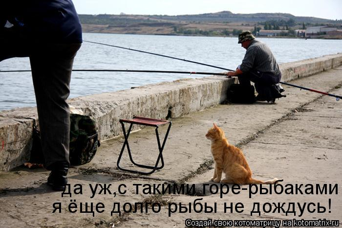 Котоматрица: да уж,с такими горе-рыбаками  я ёще долго рыбы не дождусь!