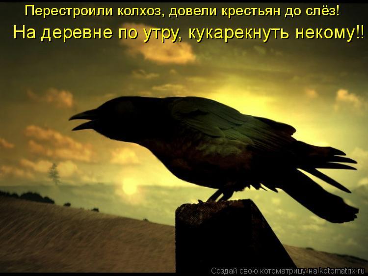 Котоматрица: Перестроили колхоз, довели крестьян до слёз! На деревне по утру, кукарекнуть некому!!