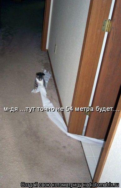Котоматрица: м-дя ...тут точно не 54 метра будет....