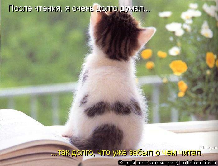 Котоматрица: После чтения, я очень долго думал... ...так долго, что уже забыл о чем читал.