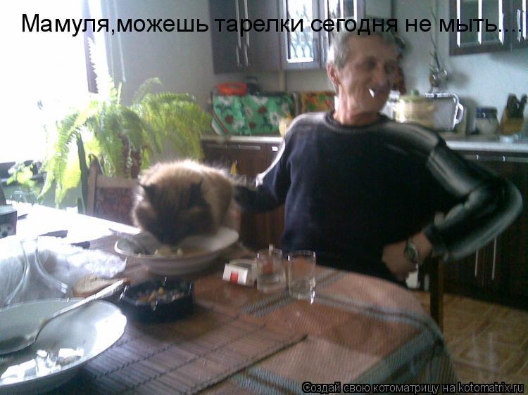 Котоматрица: Мамуля,можешь тарелки сегодня не мыть....