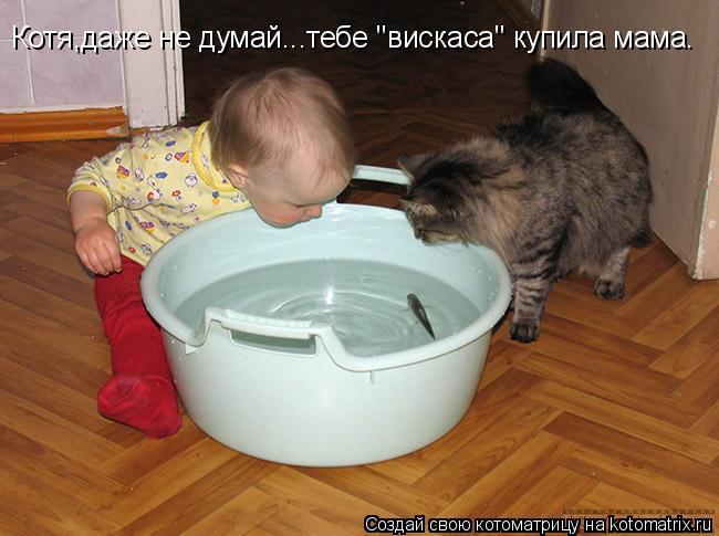 """Котоматрица: Котя,даже не думай...тебе """"вискаса"""" купила мама."""