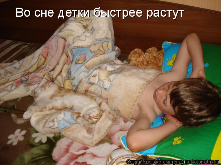 Котоматрица: Во сне детки быстрее растут